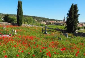 cementerio-antiguo-1
